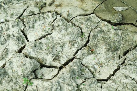 waterless: Mud dry background or texture waterless cracked ground