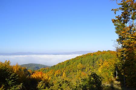 inversion in the valley Standard-Bild