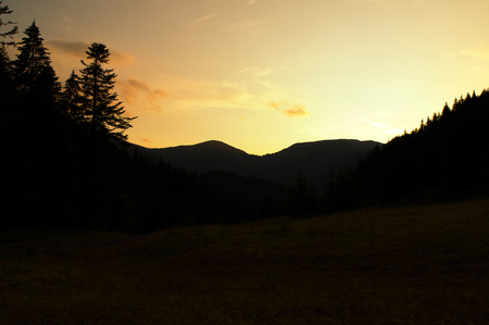 silhouettes of trees after sunset in the valley Standard-Bild