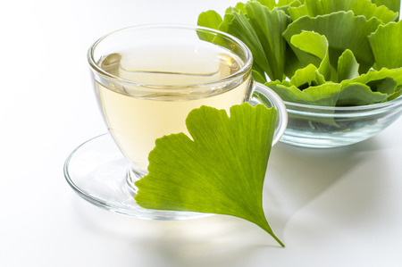 tea from leaves of ginkgo biloba tree Standard-Bild