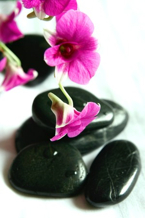 destress: Orchids and therapy stones as part of spa setting Stock Photo