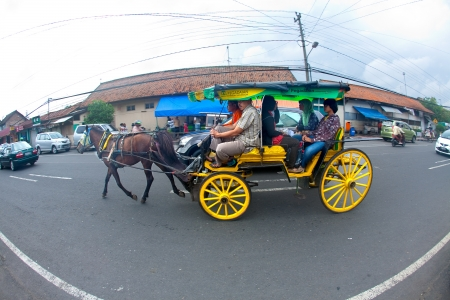 horse pull: JOGJAKARTA 15th MAY. Horse drawn carriages are popular method of transportation in the busy streets of Jogja. A family on a horse drawn carriage in the streets of Jogjakarta on 15th May 2010.