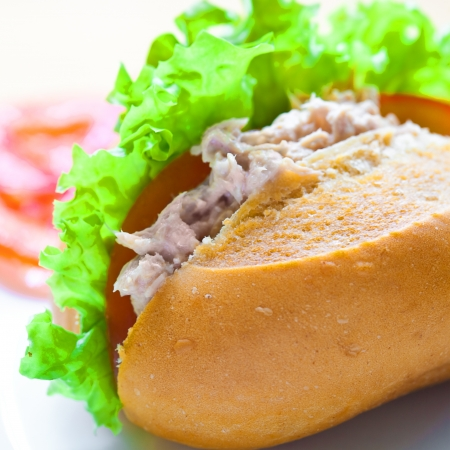 sandwich spread: Delicious and healthy tuna sandwich with tomatoes and salad.