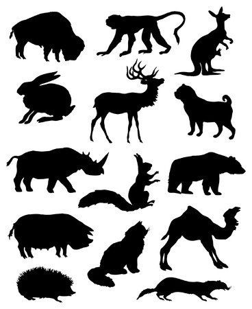 Vector silhouettes of various animals. Vector