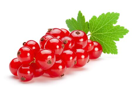Red currant berries with leaf isolated on the white background