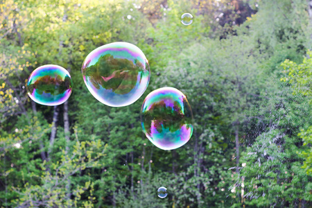 Soap bubble with the reflection on green background.