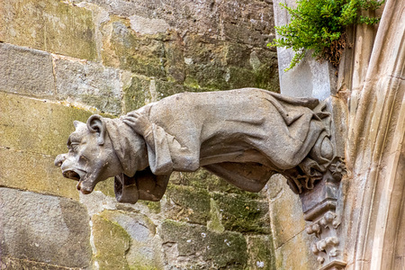 gargouille: Gargoyles, which function as downspouts, protrude from the wall of Carcassonne Cathedral