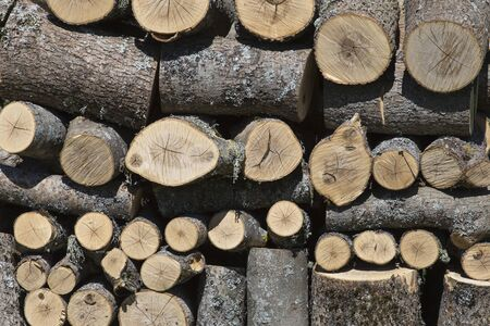 Stacks of Firewood. Wall firewood, background of dry chopped firewood in a pile.