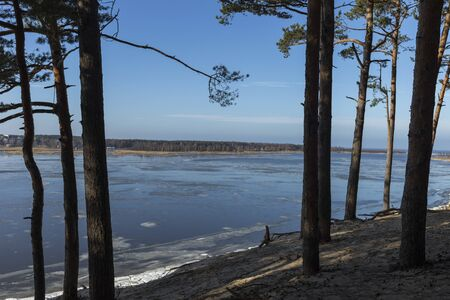 Panoramic view of the Baltic dunes, Balta kapa - Lielupe - Jurmala. 版權商用圖片