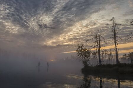 Sunrise at foggy swamp with small dead trees covered in early morning with two people on sup boards