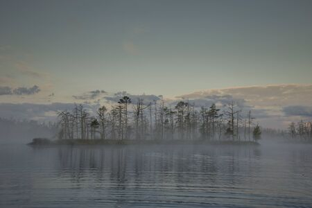 Sunrise at foggy swamp with small dead trees covered in early morning.