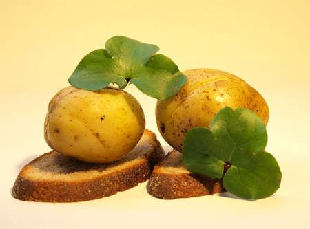 Potato. Stock Photo - 5979662