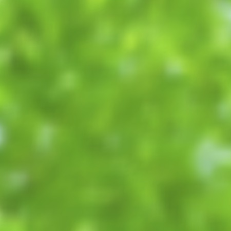 good nature: Vector blurred landscape, ecology banner, nature background. Good as web and mobile interface template. Eco design.