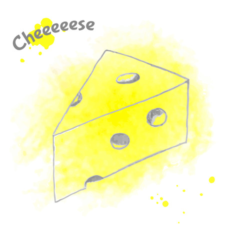 parmesan: Abstract vector decorative cheese sketch. Illustration