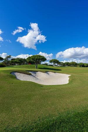 Beautiful, empty golf course with blue sky and green grass with tree and hazard