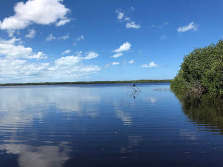 mirror effect in the river in Celestun, Yucatan, Mexico with a blue sky and some clouds