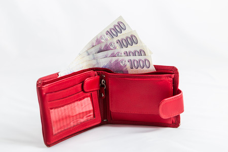 czech money Banco de Imagens