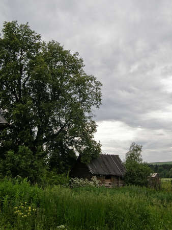 ethnology: Rural log hut in the summer under the big tree Stock Photo