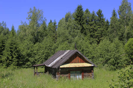 forest hut in a clearing