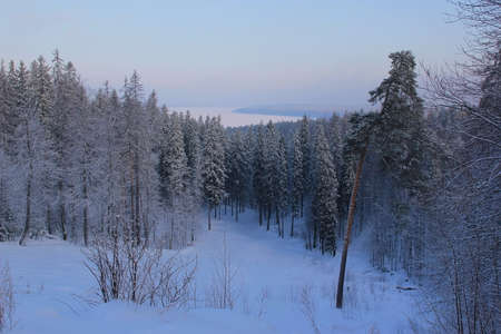 morning in the winter gully Stock Photo - 14717194