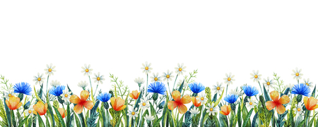 Watercolor floral template for your design. Hand painted watercolor wildflowers. Cornflower, chamomile and grass. Standard-Bild