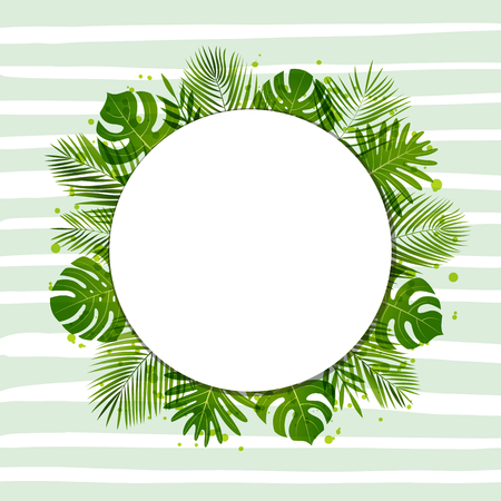 Summer background with palm leaves. Tropical plants. Vector floral background. 矢量图像