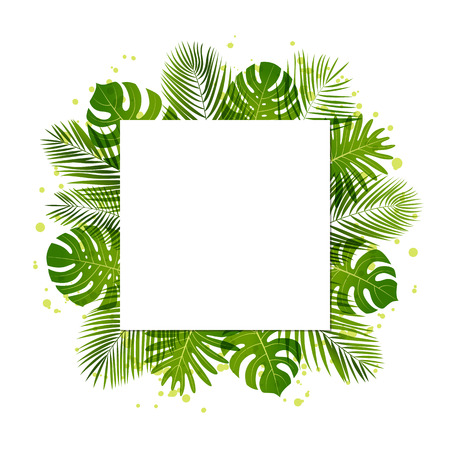 Summer background with palm leaves. Tropical plants. Vector floral background. Illustration