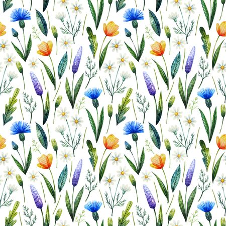 Watercolor seamless pattern with cornflowers, chamomile. Floral background. Hand drawn wildflowers.