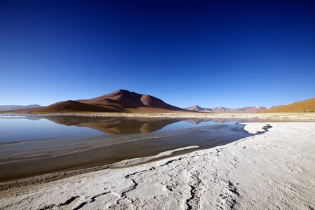 incahuasi: Altiplano landscape Stock Photo