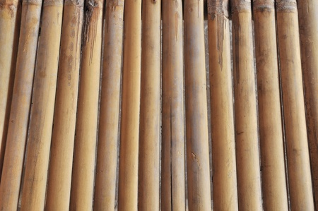 ancient bamboo texture photo