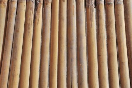 ancient bamboo texture photo