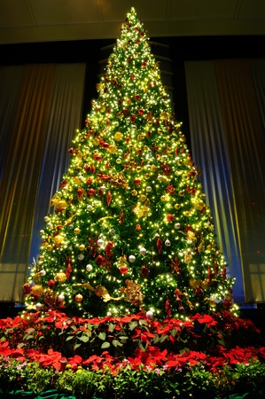 chirstmas: Christmas tree with decoration Stock Photo