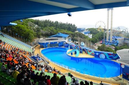 grampus: Ocean Park, Hongkong - November 20,2010 - aquarium show