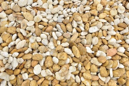 pebble stone background Stock Photo - 9149810