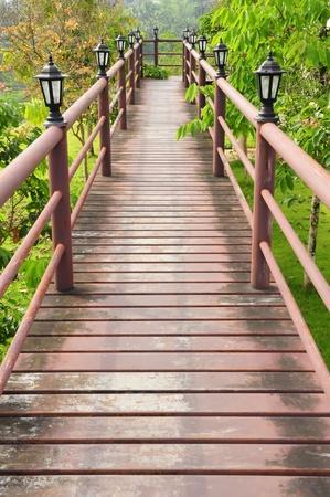 Wood path over garden photo