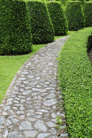 Stone pathway pass through a green garden photo