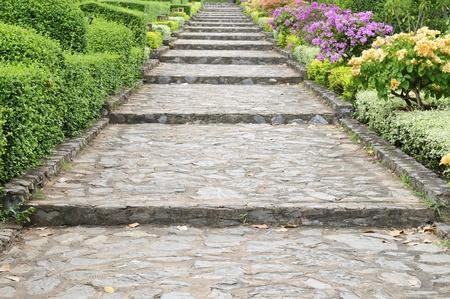 natural landscape: Stone pathway pass through a garden