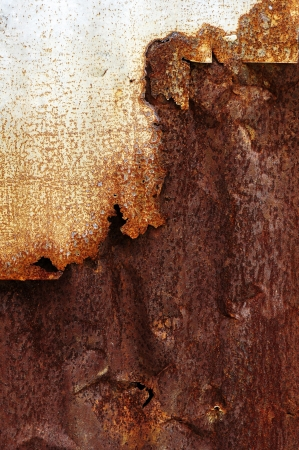 corroded: Rusty metal background