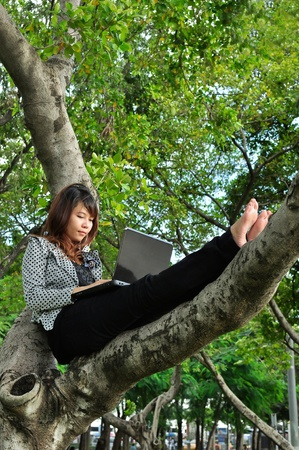 Portrait of beautiful woman sitting on the tree and playing laptop photo