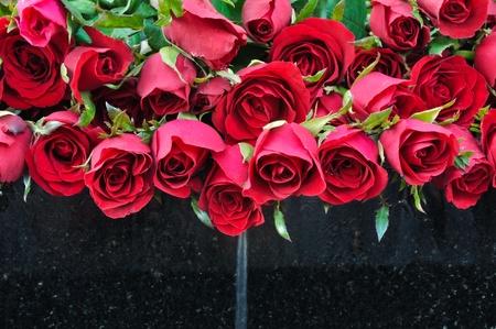 liefde: Rose met fontein Stockfoto