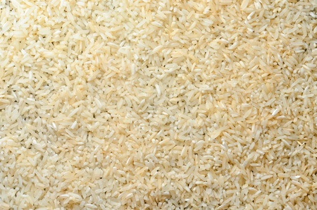 raw rice  photo