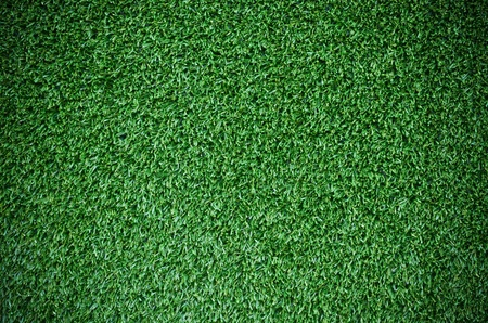 Beautiful deep green grass texture photo