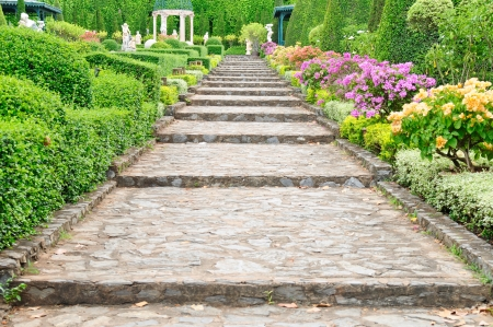 Stone pathway pass through a garden