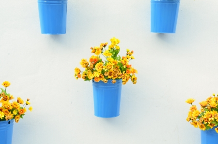 Beautiful flower in pots on white wall photo
