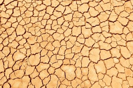 Closeup of dry soil Standard-Bild