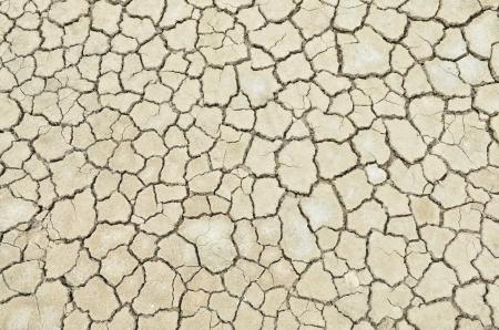 Closeup of dry soil texture Stock Photo