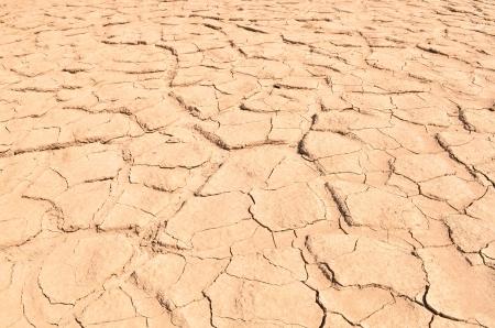 Closeup of dry soil texture photo