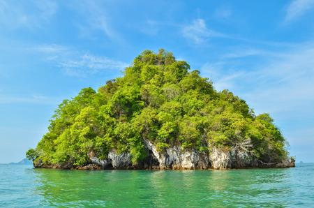 tropical plant: Beautiful tropical island