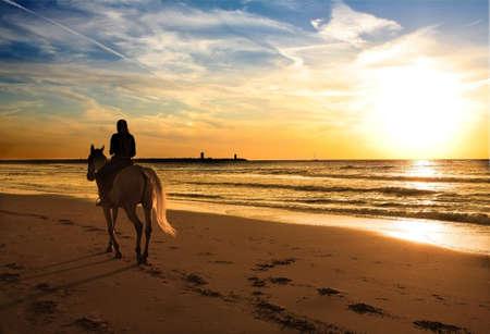 caballo de mar: puesta de sol a pie con el caballo en la playa