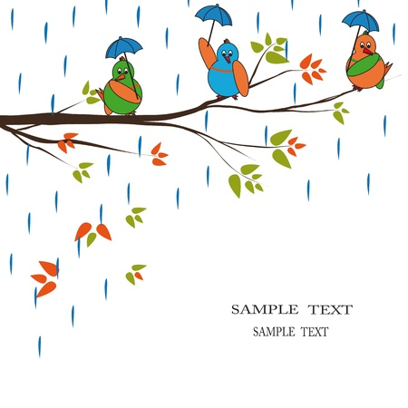rain cartoon: Three colourful birds seat on branch  Stock Photo